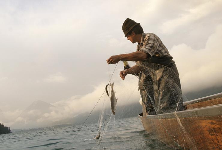 Heimat für zahlreiche Fischarten